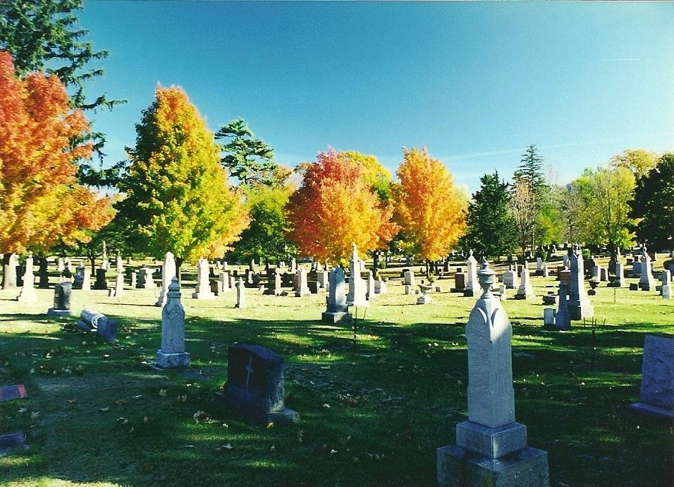 A fall photograph of the Oak Grove